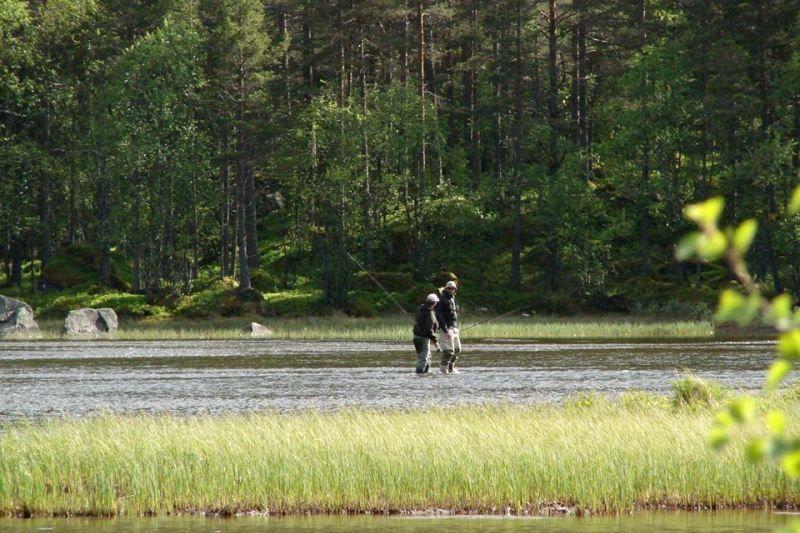 Birkelund Camping vissen