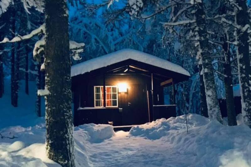 Saeterasen Hytter og Camping Trysil hytter wintersport